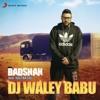 Dj Waley Babu feat Aastha Gill Single