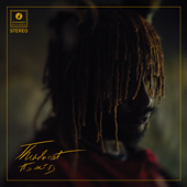 Thundercat - It Is What It Is  artwork