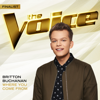Where You Come From The Voice Performance - Britton Buchanan mp3