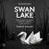 Swan Lake, Op. 20, TH 12, Act III (1877 Version): No. 19a, Pas de six. Intrada. Moderato assai - State Academic Symphony Orchestra of Russia