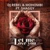 Let Me Love You feat Shaggy Single