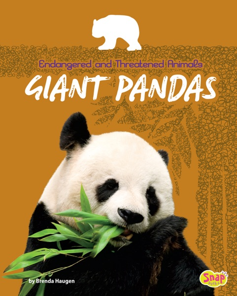 """giant panda essay The giant panda (ailuropoda melanoleuca, literally meaning """"cat-foot black-and-white"""") is a bear native to central-western and south western china."""