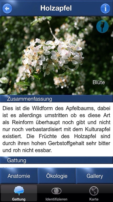 baum id deutschland app preisentwicklung und preisalarm appticker. Black Bedroom Furniture Sets. Home Design Ideas