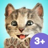 Little Kitten App