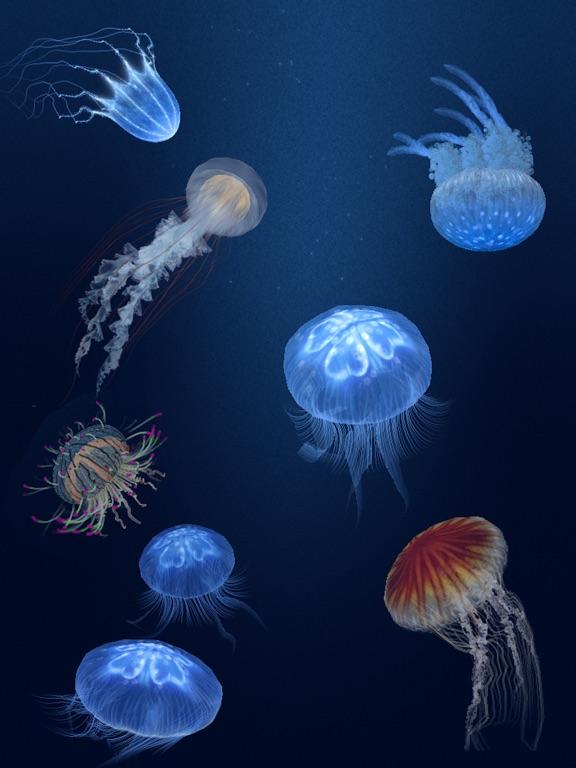 Jellyfish Heaven HD Screenshots