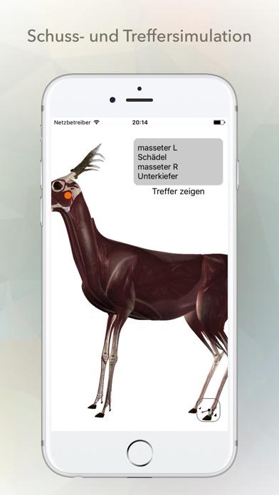 Reh Anatomie App - Preisentwicklung und Preisalarm | AppTicker