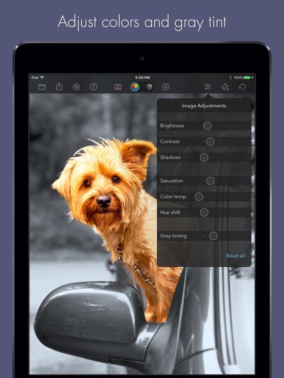 Color Splash for iPad Screenshots