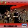 オリジナル曲|Salsoneses
