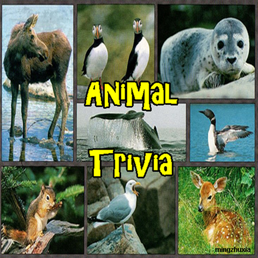 Animals of the World Trivia - FREE
