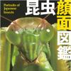 昆虫顔面図鑑【日本編】