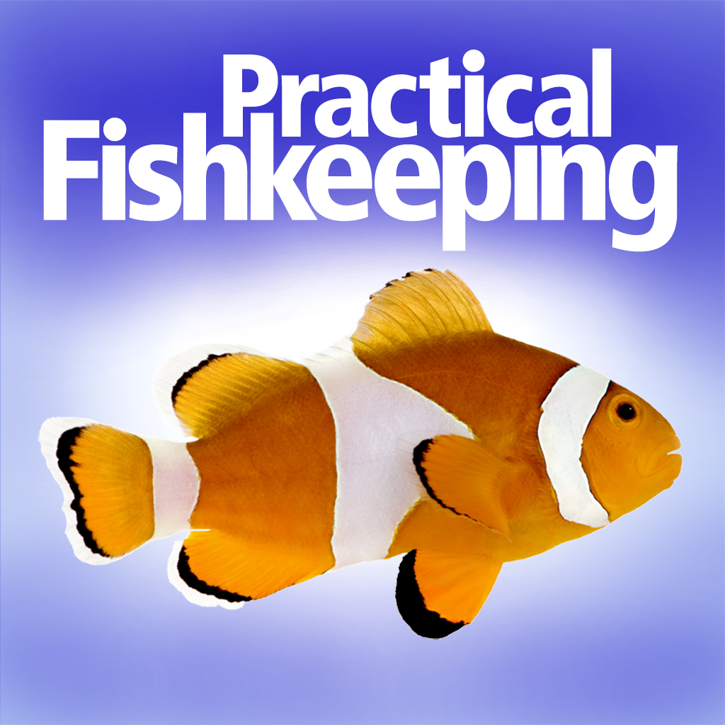 Practical Fishkeeping: Aquarium Guide