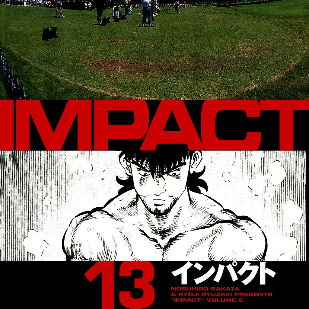 IMPACT (13)