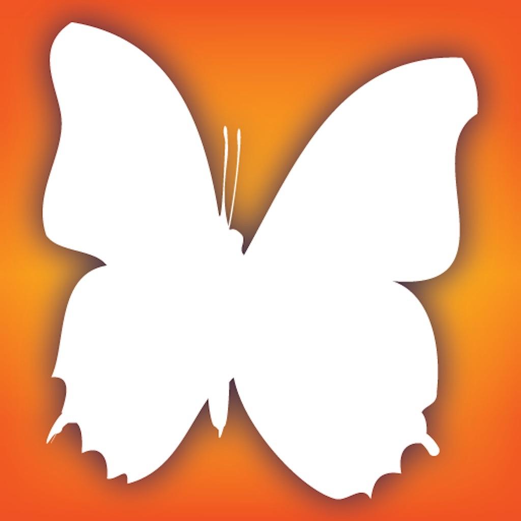 Audubon Butterflies - A Field Guide to North American Butterflies
