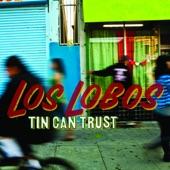 Los Lobos - Do the Murray