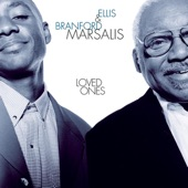 Branford Marsalis - Lulu's Back In Town (Album Version)