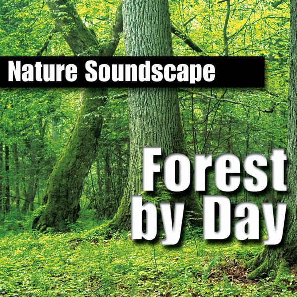 Forest By Day (Nature Sounds Only) by Nature Sounds