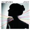 Feist - The Reminder bild