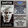 Slovak Philharmonic Chorus & Miklos Szabo - Hungarian Folksongs for mixed chorus, a cappella Sz.93 (1930): c) Az eladó lány artwork