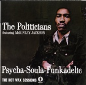 The Politicians - The World We Live In