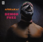 Demon Fuzz - Past Present and Future