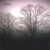 Silver - Thom Brennan
