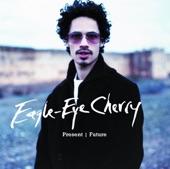Eagle-Eye Cherry - Are you still having fun? 2000