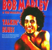 Bob Marley & The Wailers - You Can't Blame The Youth