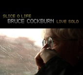 If I Had A Rocket Launcher (Album Version) by Bruce Cockburn from Stealing Fire