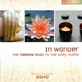 In Wonder: The Narrow Road To The Deep North