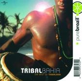 Timbalada - Beija-Flor
