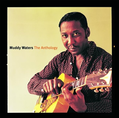 The Anthology 1947-1972 - Muddy Waters album