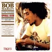 Bob Marley - Brain Washing