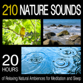 210 Nature Sounds: 20 Hours Of Relaxing Natural Ambiences For Meditation And Sleep-Pro Sound Effects Library