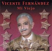 101 Vicente Fernández - Mi Viejo