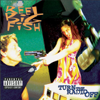 Reel Big Fish - She Has a Girlfriend Now artwork