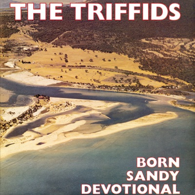 Born Sandy Devotional - The Triffids