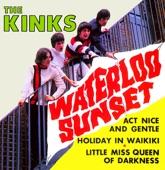 The Kinks - Holiday in Waikiki