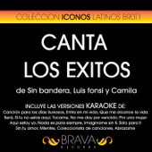 Karaoke - Canta los Exitos de Camila, Luis Fonsi y Sin Bandera