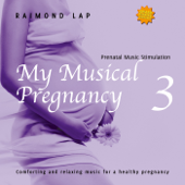My Musical Pregnancy 3