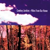 Cowboy Junkies - New Dawn Coming