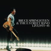 Bruce Springsteen & the E Street Band Live 1975-85