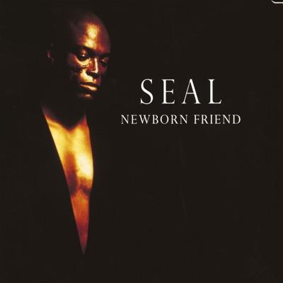 Newborn Friend - Seal