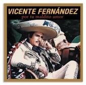 Vicente Fernández - Por Tu Maldito Amor (Album Version)