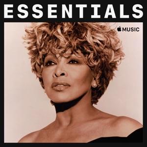 Tina Turner Essentials