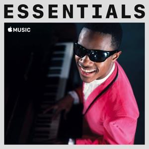 Stevie Wonder Essentials