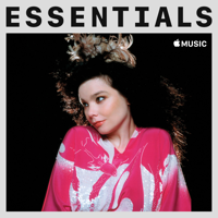 Download Mp3  - Björk Essentials