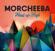 Gimme Your Love - Morcheeba
