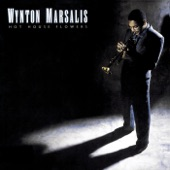 Wynton Marsalis - I'm Confessing (That I Love You)