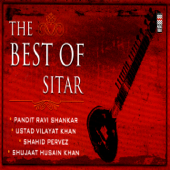 The Best of Sitar Vol. 1