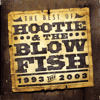 Hootie & The Blowfish - The Best of Hootie & The Blowfish (1993-2003)  artwork